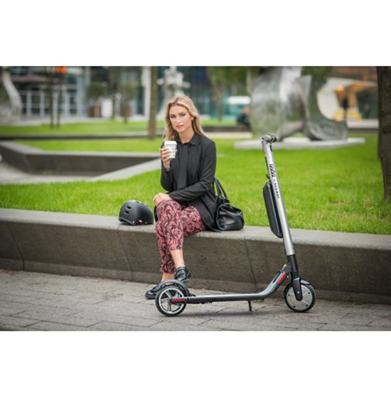 Ninebot By Segway ES4 Professionel